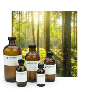 Clearance Forest Essential Oil Blend