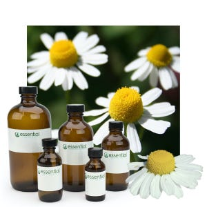 Clearance German Chamomile Essential Oil